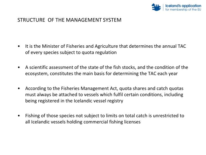 STRUCTURE  OF THE MANAGEMENT SYSTEM