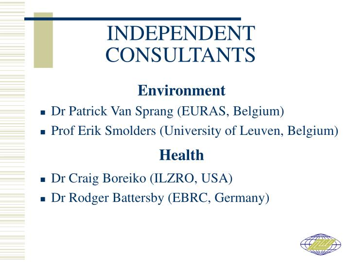INDEPENDENT CONSULTANTS