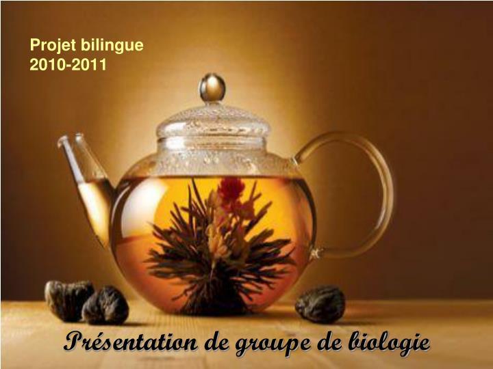 Projet bilingue 2010 2011