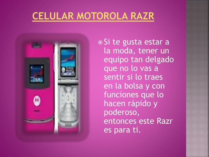 Celular Motorola Razr