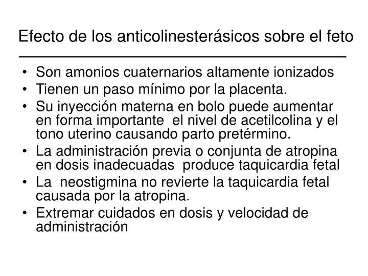 Efecto de los anticolinesterásicos sobre el feto