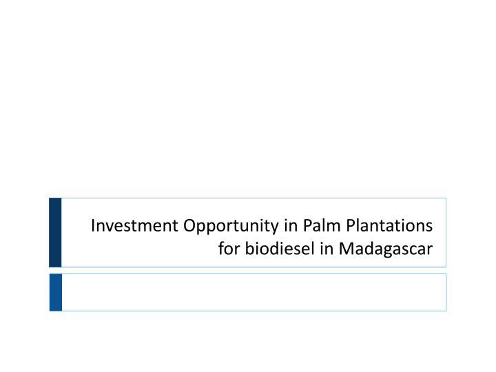 investment opportunity in palm plantations for biodiesel in madagascar n.