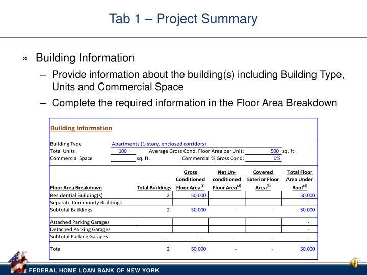 Tab 1 project summary