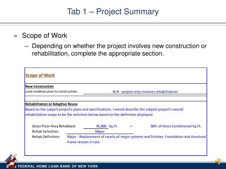 Tab 1 – Project Summary
