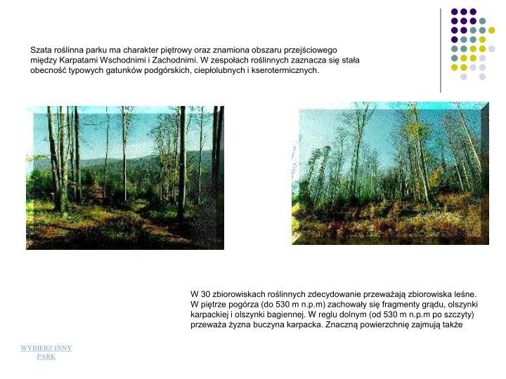 Szata roślinna parku ma charakter piętrowy oraz znamiona obszaru przejściowego między Karpatami Wschodnimi i Zachodnimi. W zespołach roślinnych zaznacza się stała obecność typowych gatunków podgórskich, ciepłolubnych i kserotermicznych.