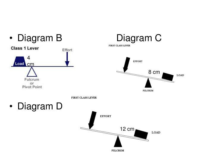Diagram BDiagram C