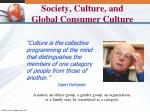 society culture and global consumer culture1