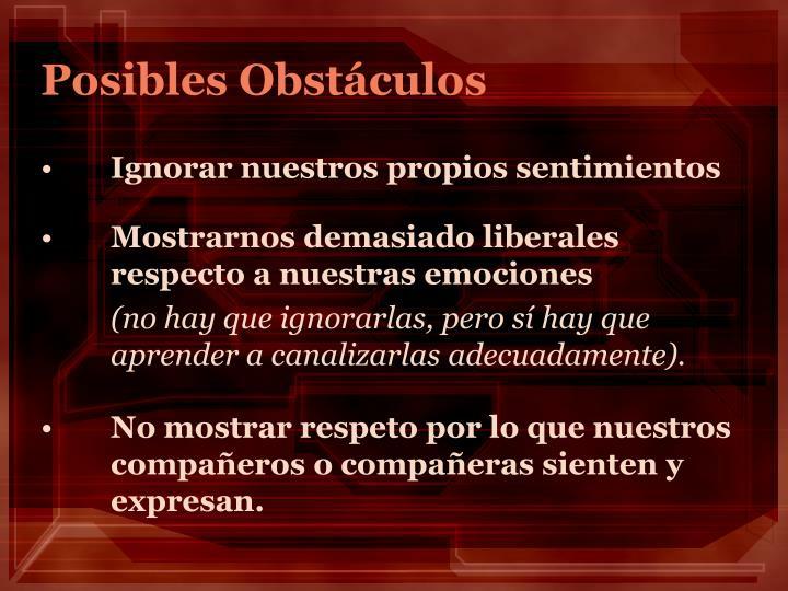 Posibles Obstáculos