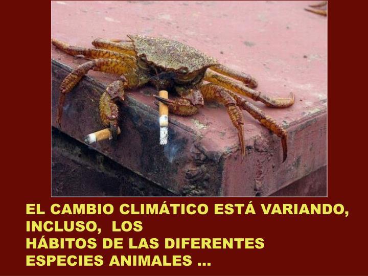 EL CAMBIO CLIMÁTICO ESTÁ VARIANDO,