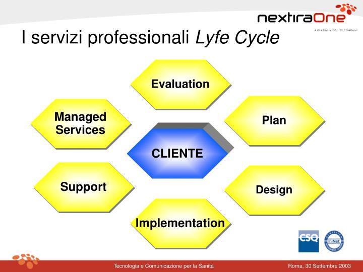 I servizi professionali