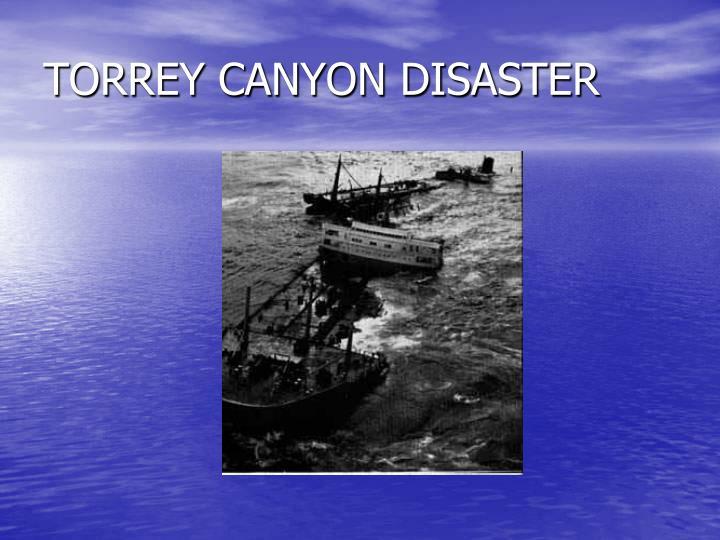 TORREY CANYON DISASTER