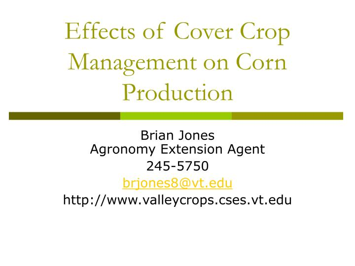effects of cover crop management on corn production n.