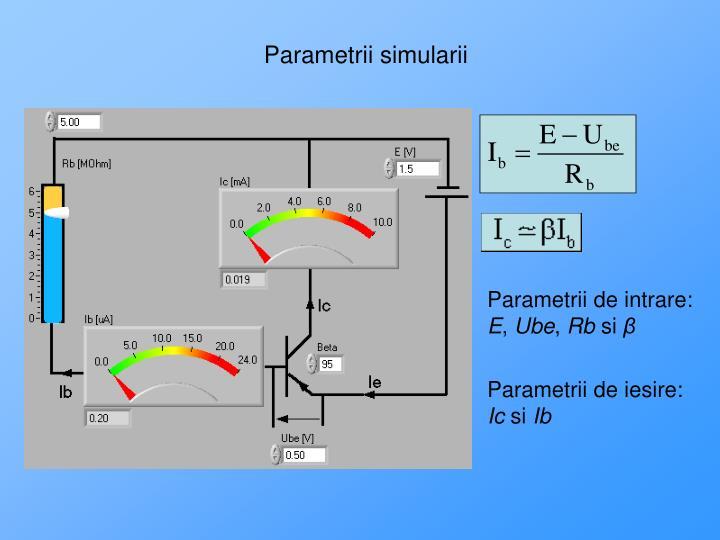 Parametrii simularii