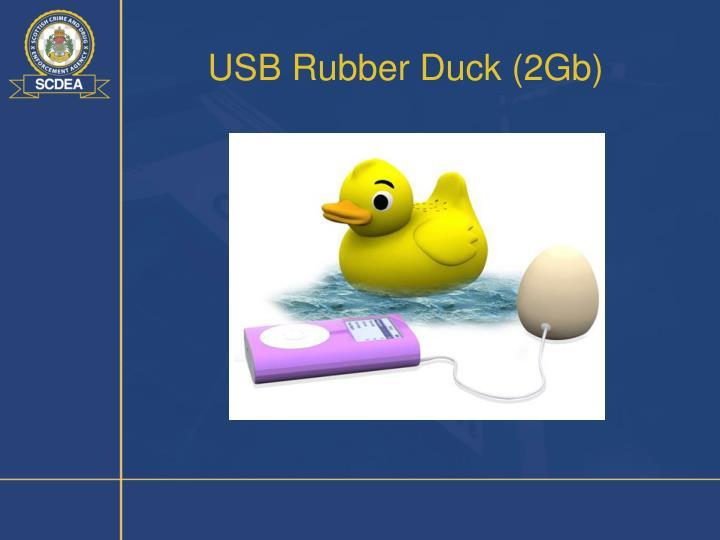 USB Rubber Duck (2Gb)