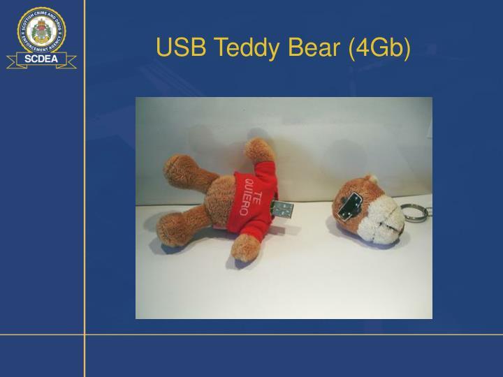 USB Teddy Bear (4Gb)