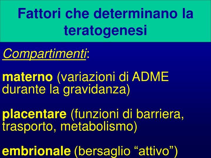 Fattori che determinano la teratogenesi