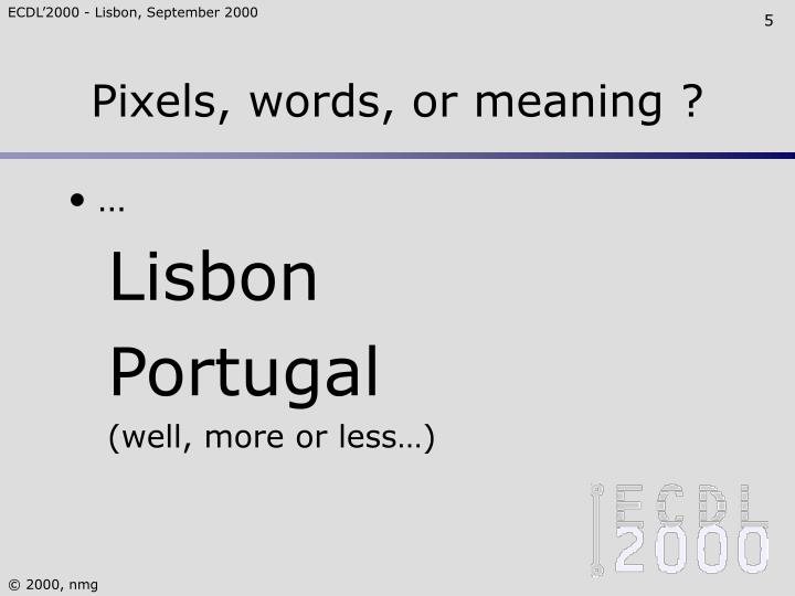 Pixels, words, or meaning ?