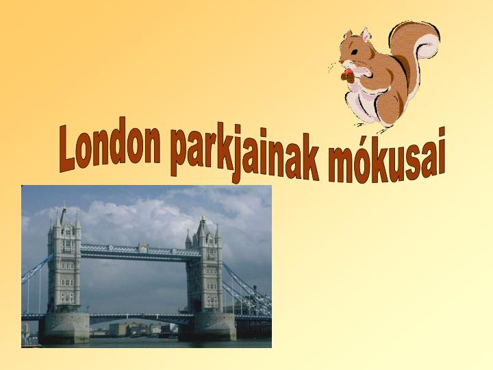 London parkjainak mókusai