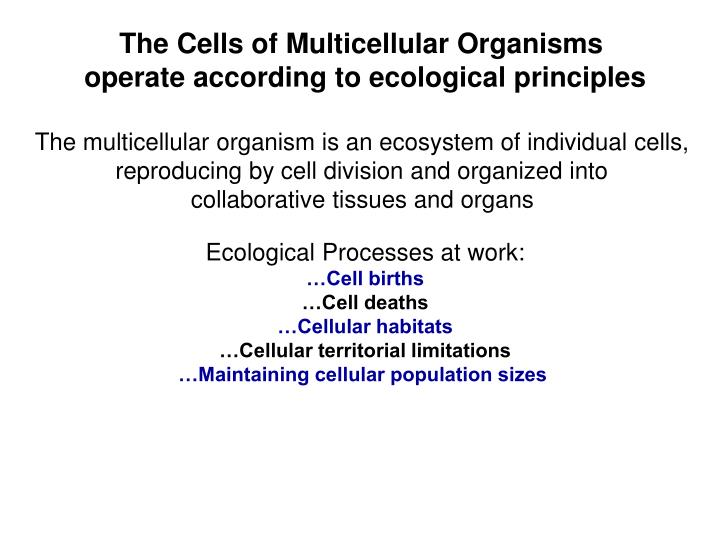 The Cells of Multicellular Organisms
