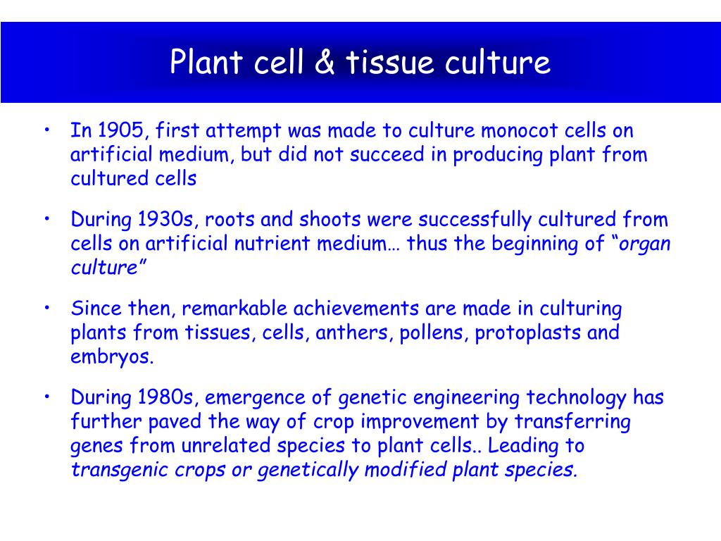 PPT - Agricultural Biotechnology PowerPoint Presentation