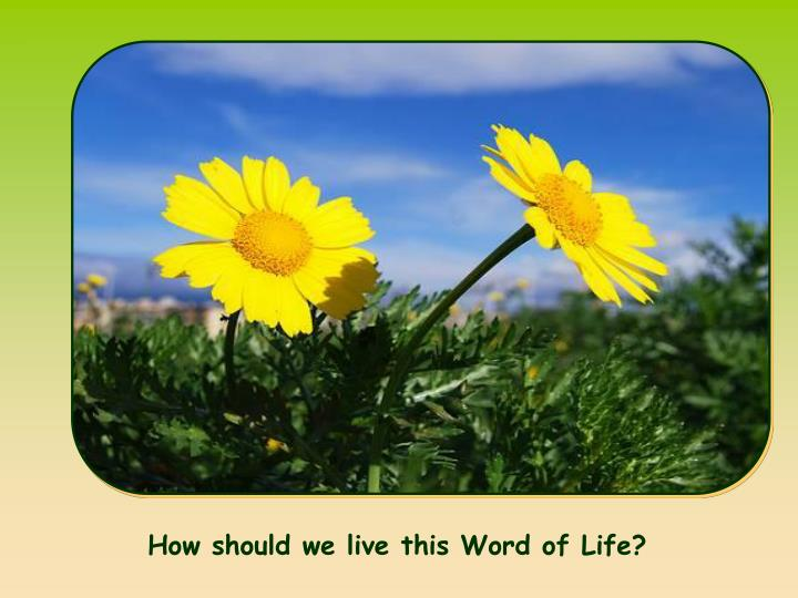 How should we live this Word of Life?