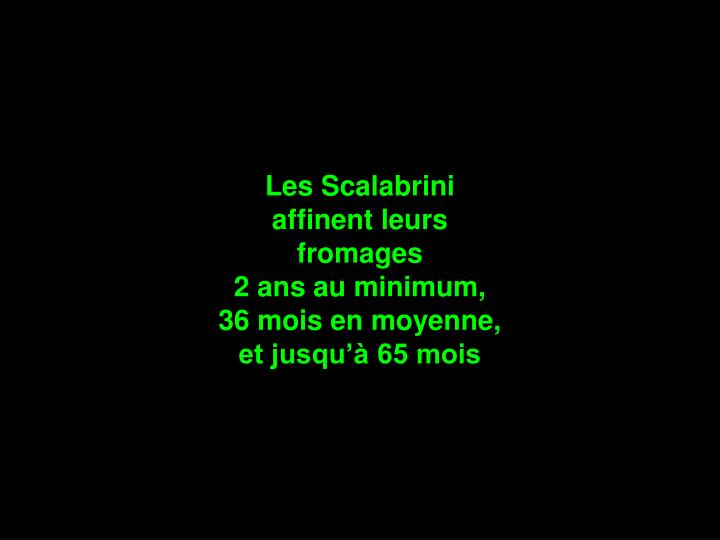 Les Scalabrini