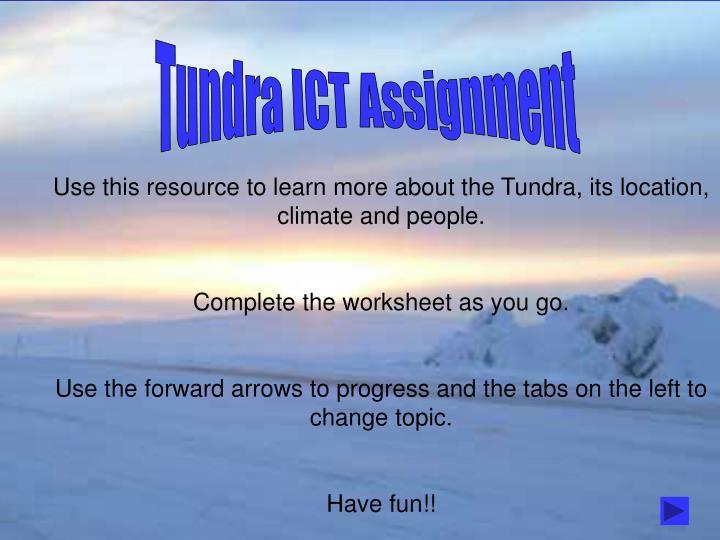 Tundra ICT Assignment