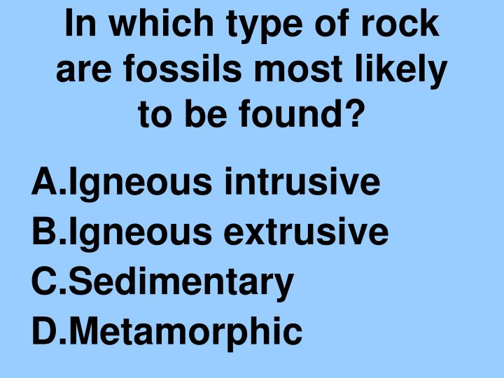 In which type of rock are fossils most likely to be found