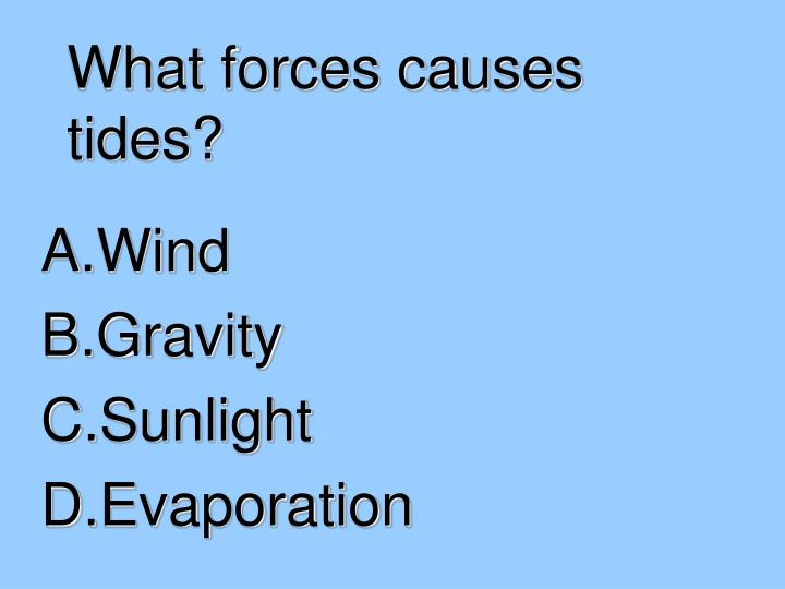 What forces causes tides?