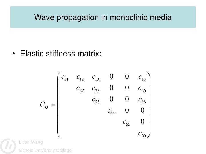 Wave propagation in monoclinic media