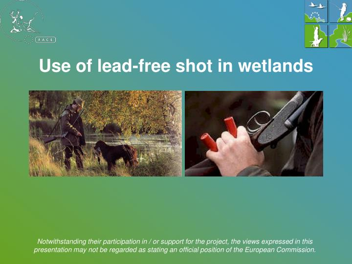 Use of lead-free shot in wetlands