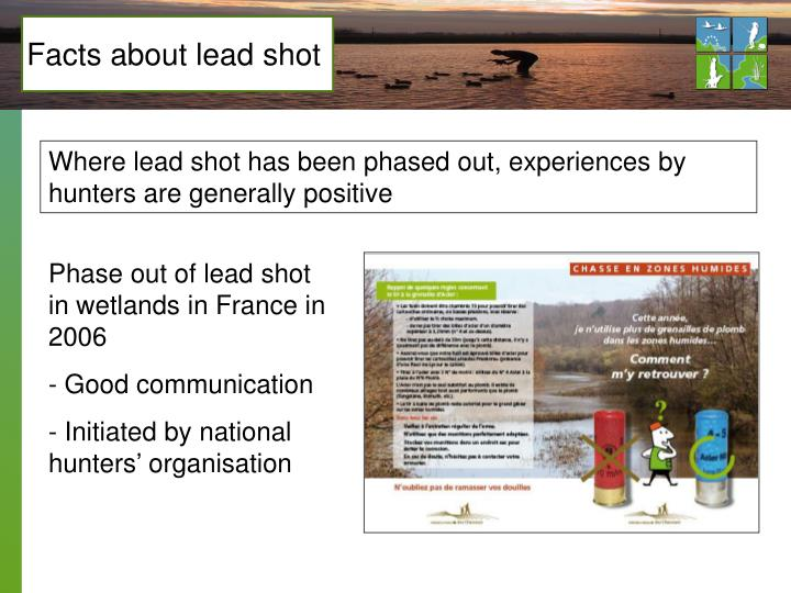 Facts about lead shot