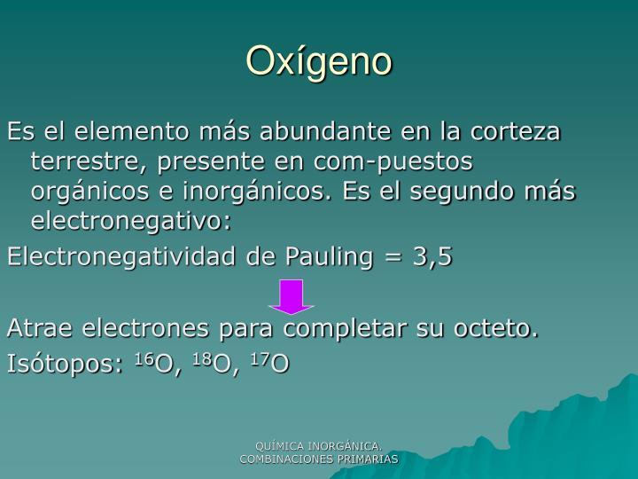 Ox geno