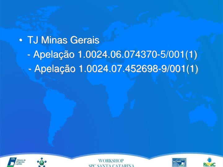 TJ Minas Gerais