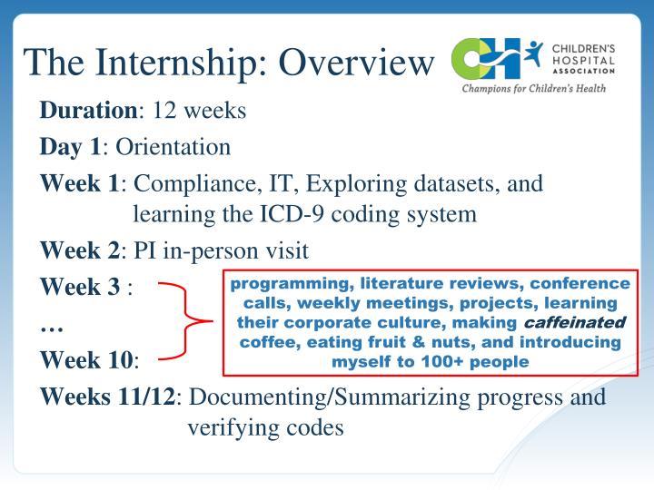 The Internship: Overview