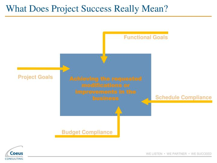 What Does Project Success Really Mean?