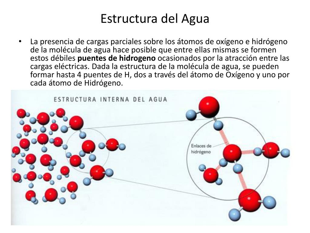 Ppt Estructura Del Agua Powerpoint Presentation Free