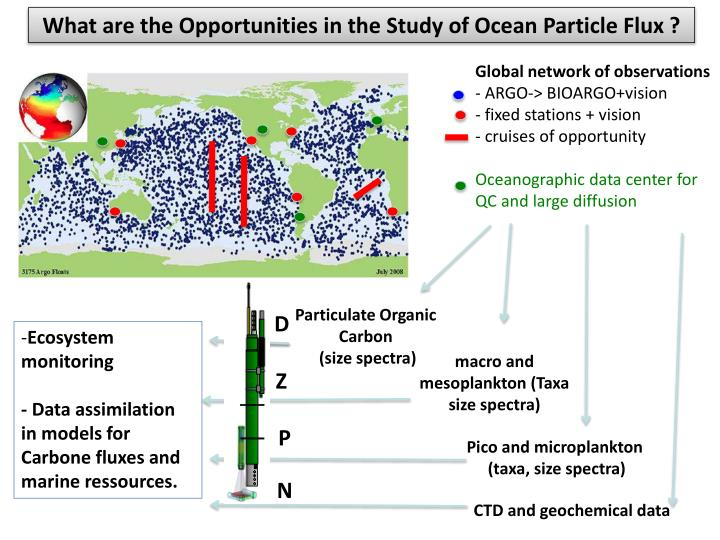 What are the Opportunities in the Study of Ocean Particle Flux ?