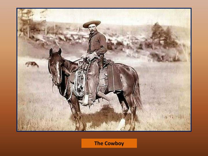 the american cowboy Get in touch with your wild self and celebrate national day of the american cowboy join us for national day of the american cowboy on saturday, july 28, 2018 at the george ingalls equestrian event center.