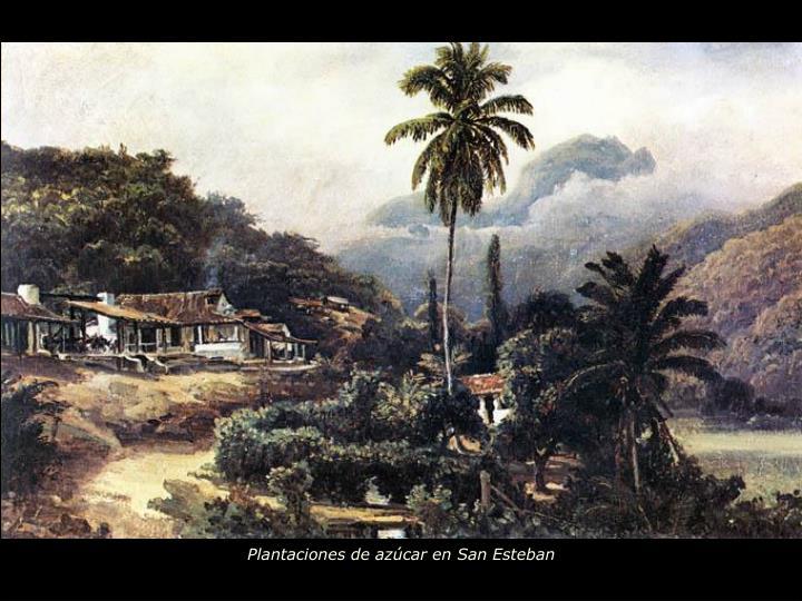 Plantaciones de azúcar en San Esteban