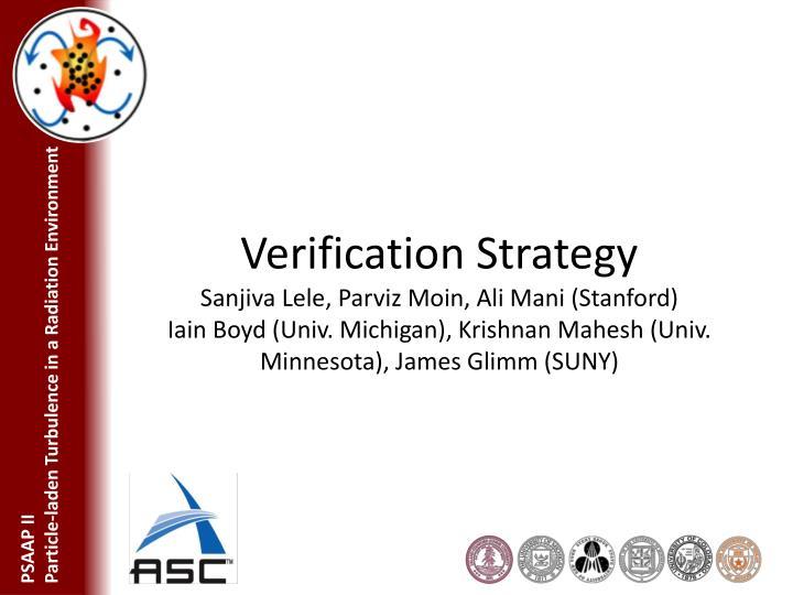 Verification Strategy