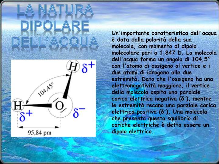La natura dipolare dell'acqua