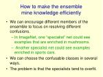 how to make the ensemble mine knowledge efficiently