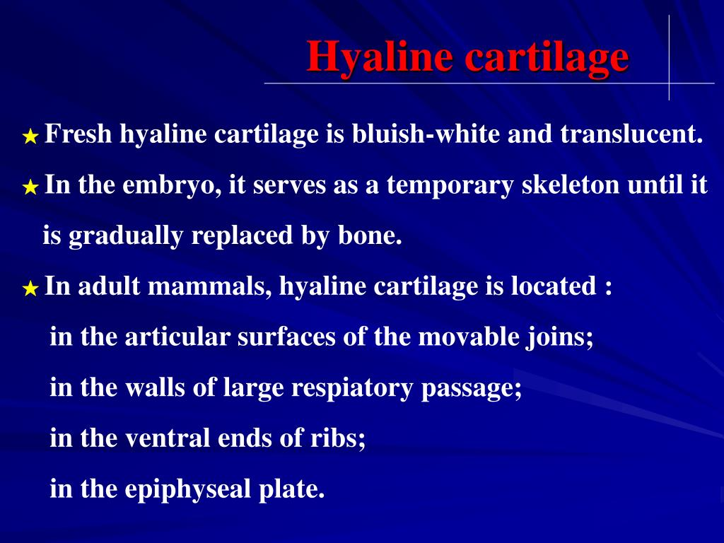 Ppt Chapter 7 Cartilage Powerpoint Presentation Free Download