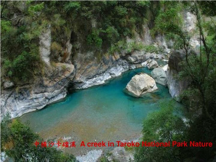 中橫沙卡礑溪