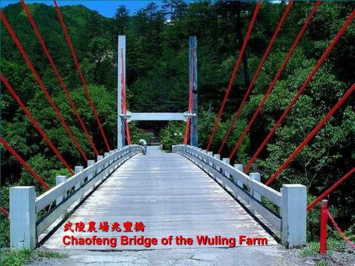 武陵農場兆豐橋