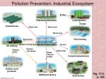 pollution prevention industrial ecosystem
