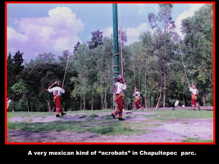 "A very mexican kind of ""acrobats"" in Chapultepec  parc."