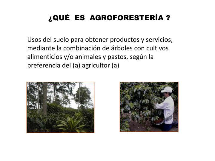 ¿QUÉ  ES  AGROFORESTERÍA ?