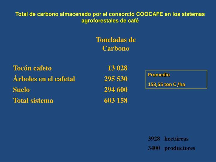 Total de carbono almacenado por el consorcio CO